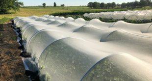 کارخانه تولید نایلون کشاورزی